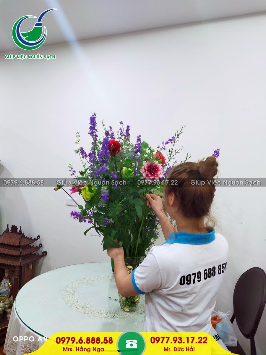 Cung cấp người giúp việc gia đình tại phường Yên Hòa
