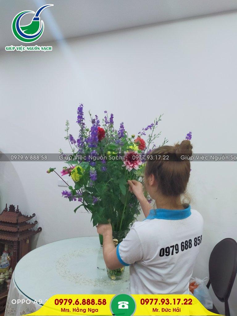 Tìm giúp việc cho người nước ngoài tại Hà Nội
